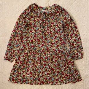 Hanna Andersson Fall Floral Dress